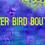 SilverBirdBoutique