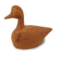 duckwells