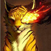 kittycat112