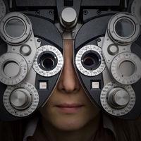 optometristpalosverdes