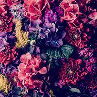 flowergirl6943215